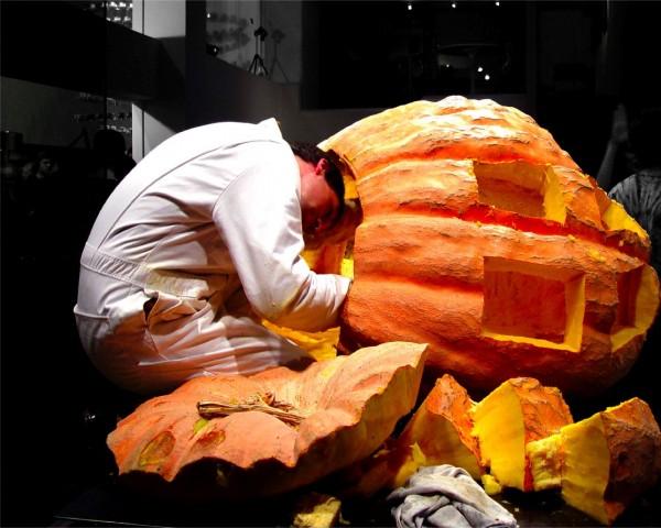 gigantopumpkin19